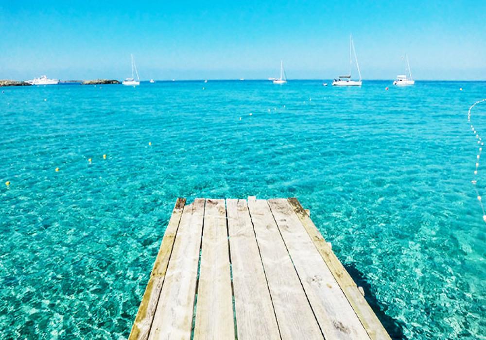 Excursión Calas de Ibiza y Formentera image
