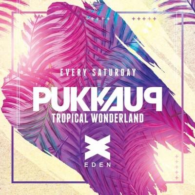 Pukka Up Tropical Wonderland image