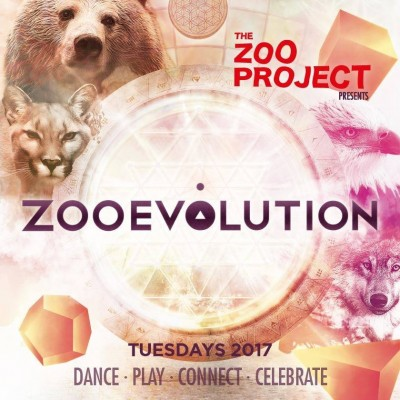 The Zoo Project Evolution image
